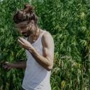 Wie man Gras anbaut: Ein Leitfaden für Anfänger