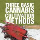 Drei grundlegende Methoden des Cannabis Anbaus