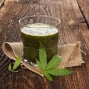 Die Vorteile des rohen Cannabissaftes