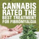 Cannabis Als Beste Behandlung für Fibromyalgie Gewertet