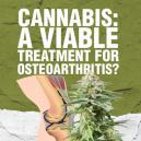 Cannabis: Eine wirksame Therapie für Arthrose?