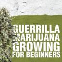 Guerilla Marihuana Anbau für Anfänger