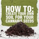 Wie man seinen eigenen Boden für die Cannabissamen vorbereit