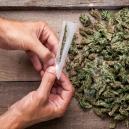 Wie man Schimmel beim Trocknen und Aushärten von Weed vermei